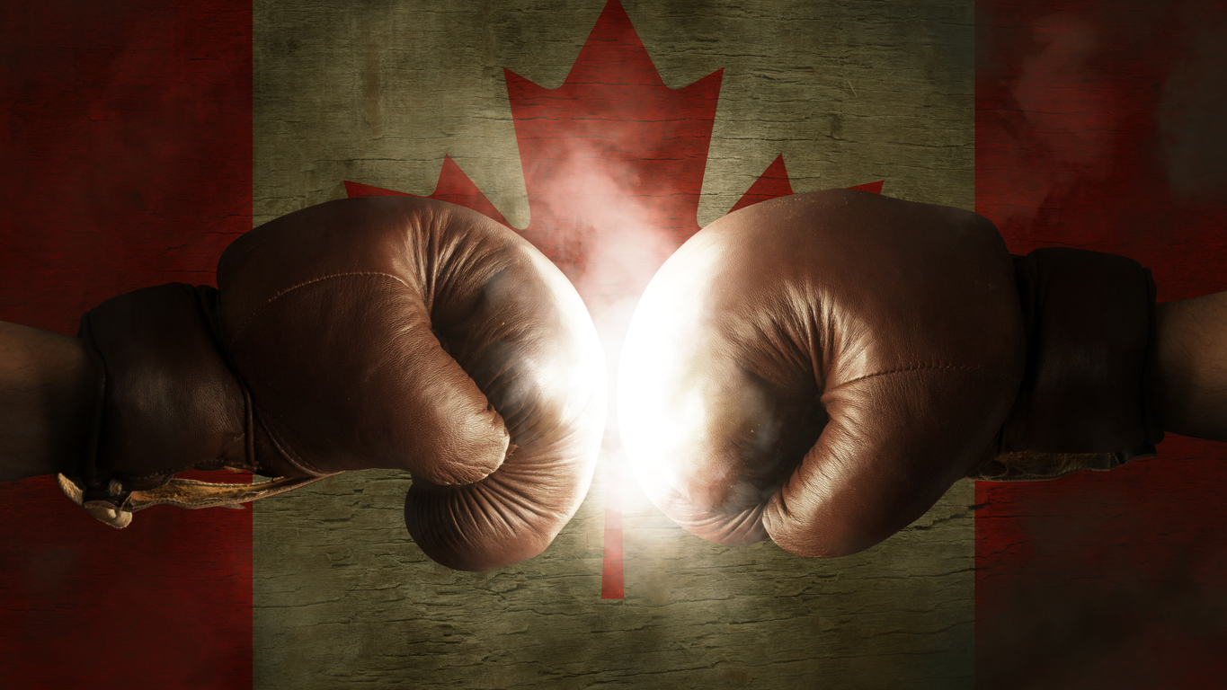 Boxing Gloves with the Flag of Canada